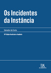 Os Incidentes da Instância - eBook