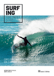Surfing: the Next Step - eBook